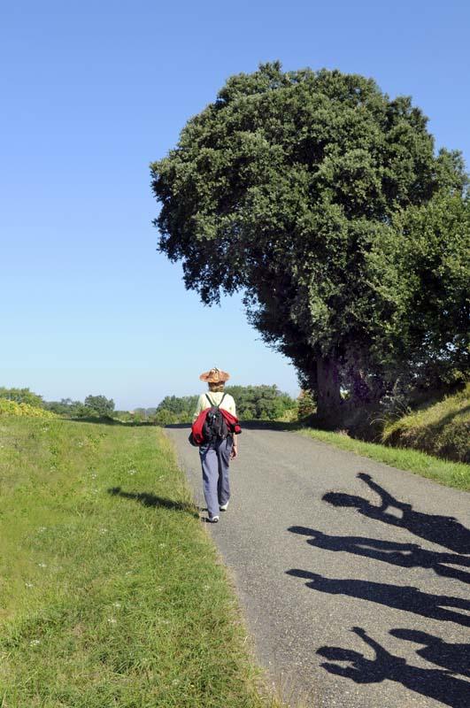 A la découverte du monde rural, environnement, cultures archite
